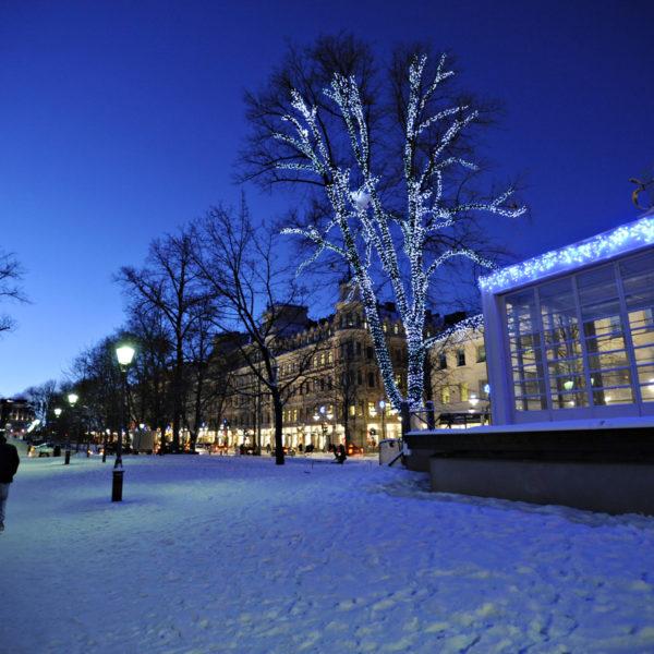 Talvista Helsinkiä joulukuu 2009-tammikuu 2010. Kuva:Kimmo Brandt