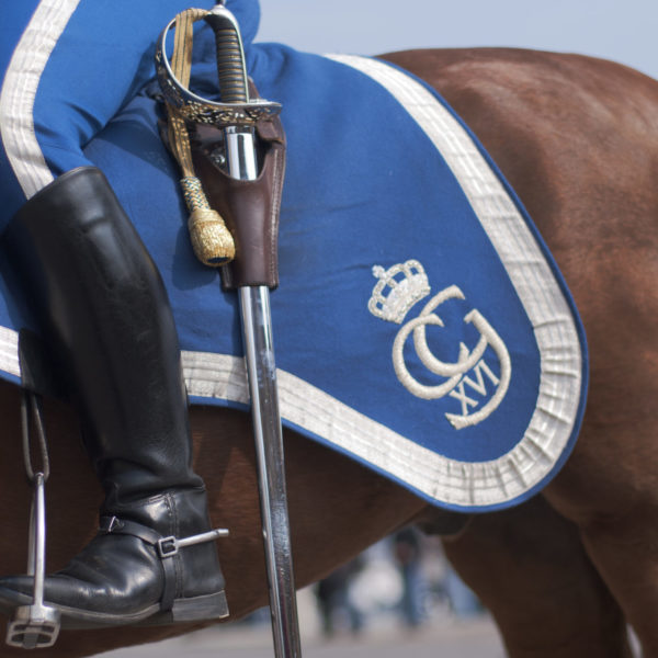 Royal_Guards_on_horses_5_Photo_Staffan Eliasson_139_High-res